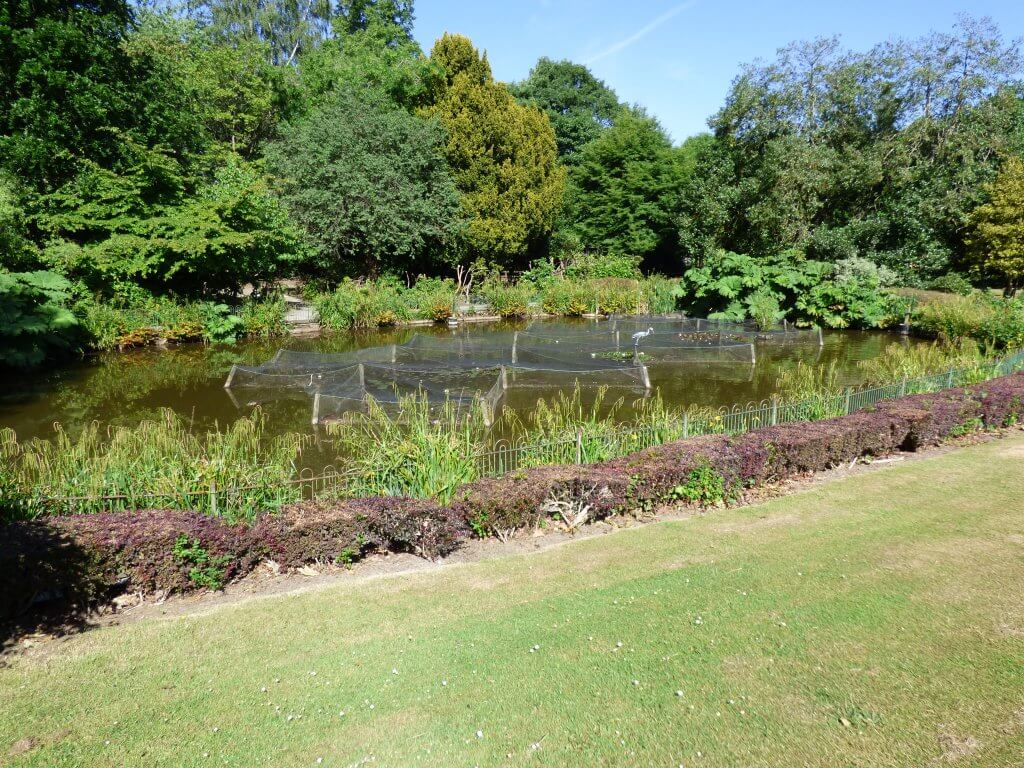 Walton Hall Formal Gardens looking lovely in the sunshine, a view of the pond