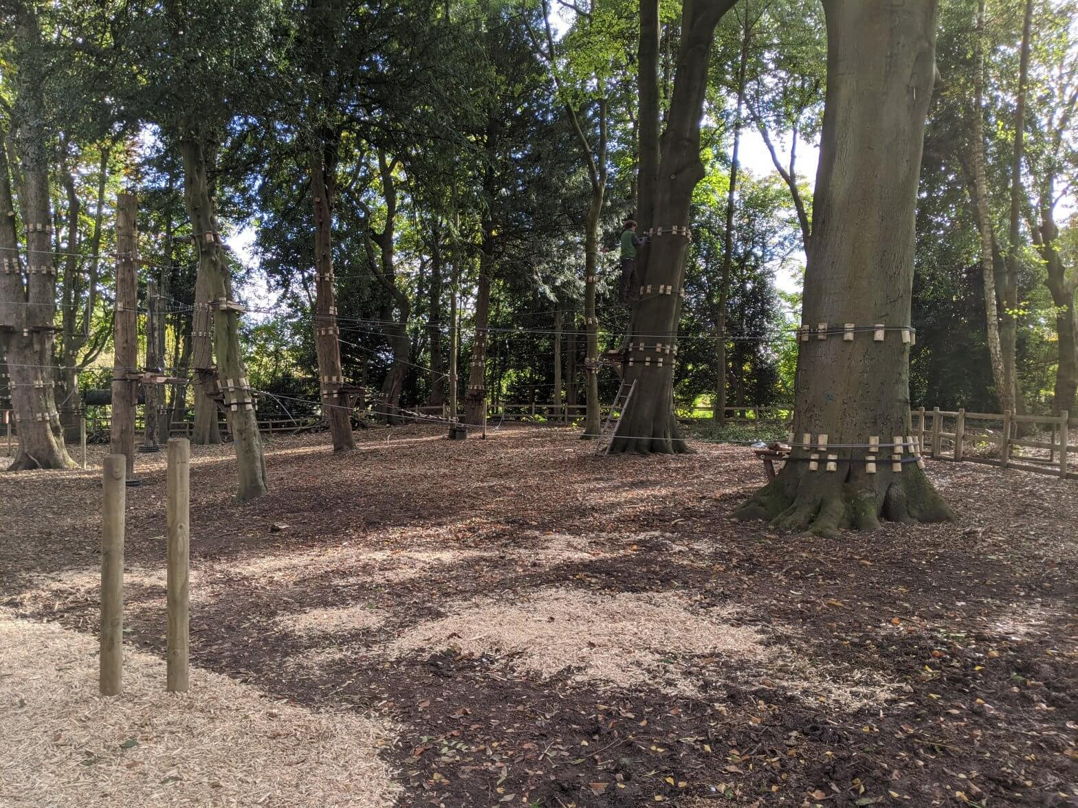 High ropes progress at Walton Hall and Gardens