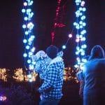 Light show at Christmas