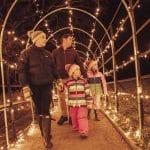 Family at illuminate light show